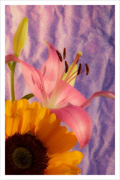 Sunflower Lily, Nineties Style, Vivid Tones Bouquet, Limited Edition Giclée