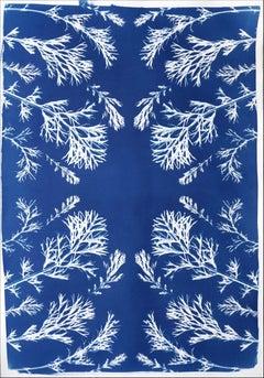 Classic Botanical Cyanotype of Vintage Pressed Flowers, Artisan Made, Blue Tones