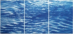 Colorado River Triptych of Refreshing River Flow, Set of Three Cyanotypes, Blue