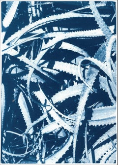 Jungle Aloe Leaves in Blue Tones, Tropical Botanical Cyanotype Print on Paper