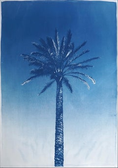 Nile River Palm, Botanical Cyanotype on Watercolor Paper, Desert Palm, Tropical