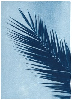 Palm Leaf Over Blue Sky, Handmade Botanical Cyanotype on Paper, Tropical Vintage