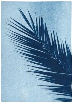 Palm Leaf Over Blue Sky, Handmade Botanical Cyanotype on Paper, Tropical Vintage