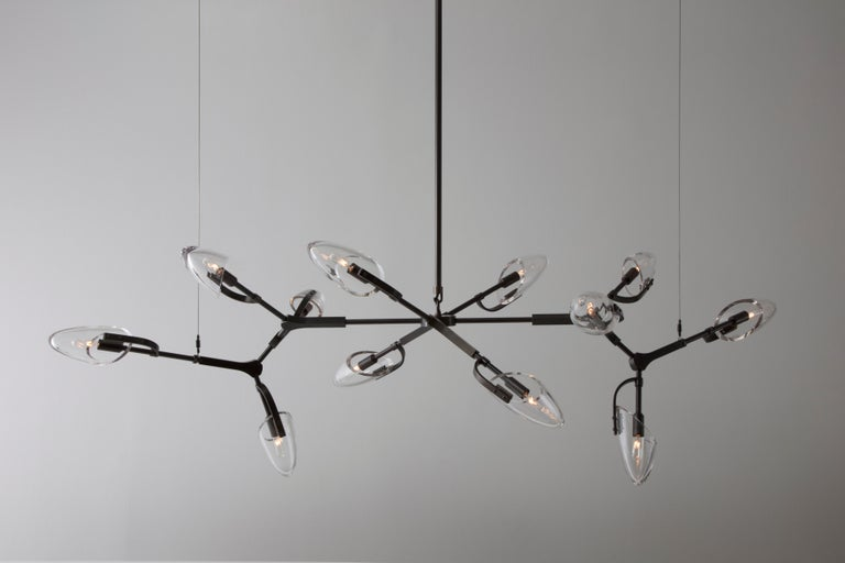 Kinesis '1.12' Chandelier in Blackened Brass and Clear Glass by Matthew Fairbank In New Condition For Sale In Brooklyn, NY