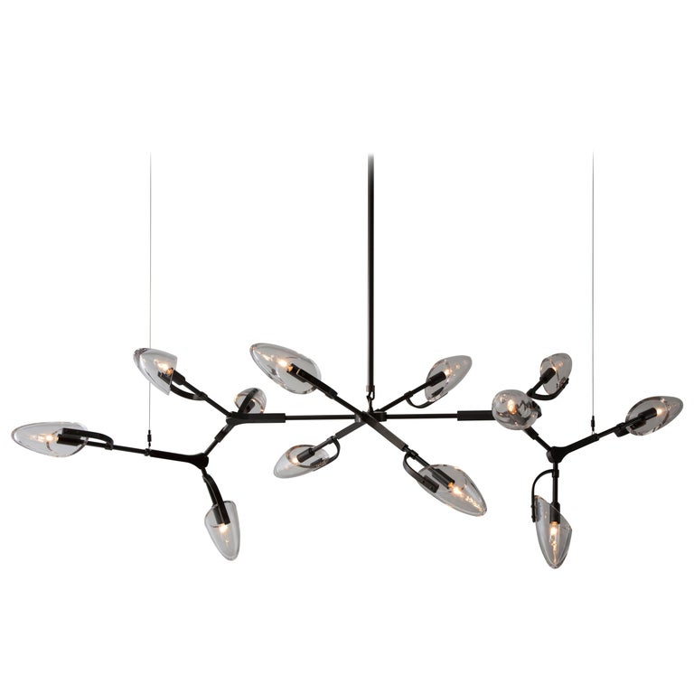 Kinesis '1.12' Chandelier in Blackened Brass and Clear Glass by Matthew Fairbank For Sale