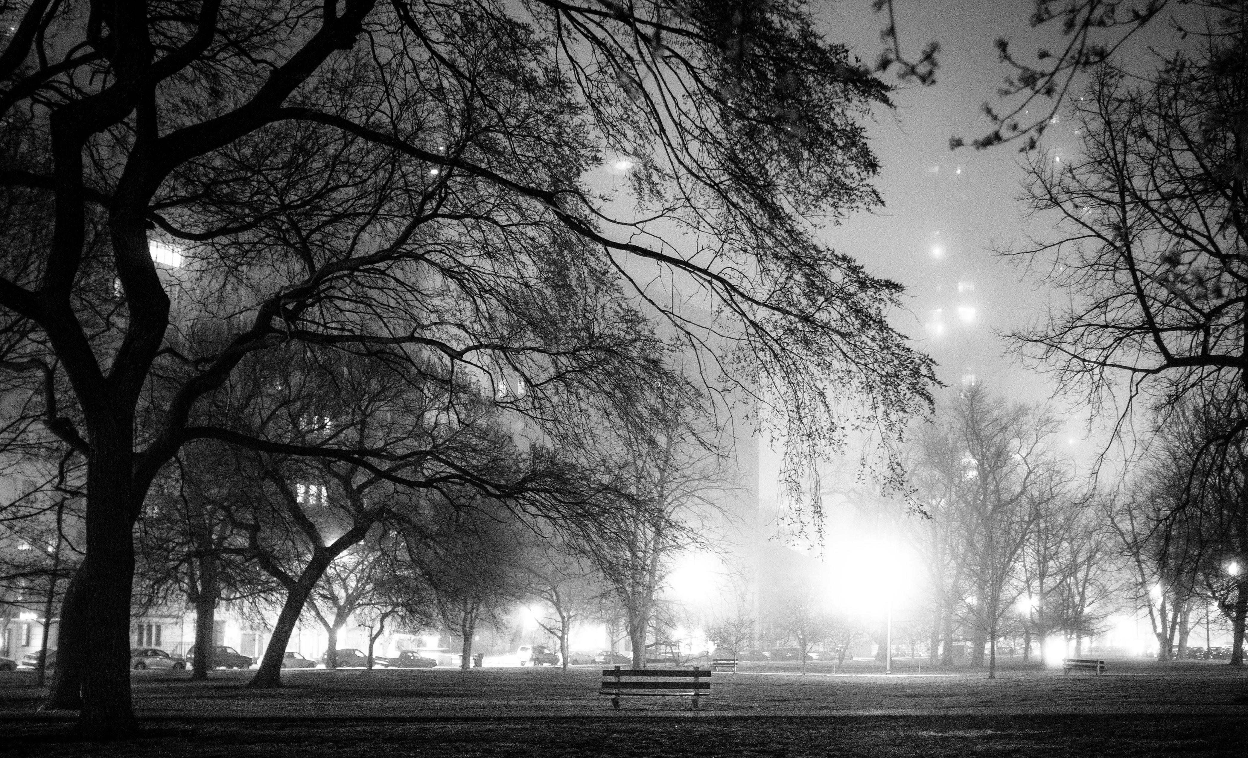 Lincoln Park Fog, Chicago, Nightfall in the Park w Street Lights Casting Shadows