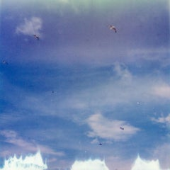 Birds (50x50cm) - 21st Century, Polaroid, Landscape Photography