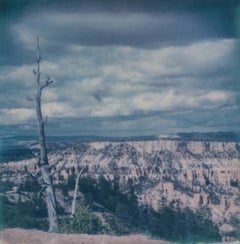Bryce I - 21 Century, Women, Contemporary, Polaroid, Landscape