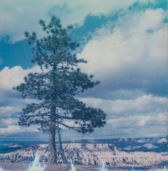 Bryce II - 21 Century, Women, Contemporary, Polaroid, Landscape