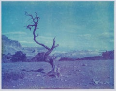 Deadwood - Contemporary, Polaroid, Landscape, Color, Blue, Desert