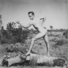 Demonstrate - Contemporary, Polaroid, Nude, 21st Century, Joshua Tree