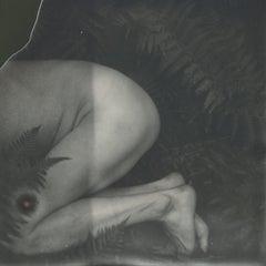 Homo Naturalis - 21st Century, Polaroid, Photography, Contemporary