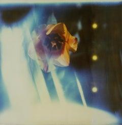 Ray of Light - Contemporary, Landscape, Polaroid, Photograph, Expired, Blue