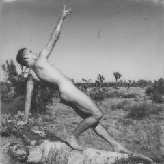 Reach - Contemporary, Polaroid, Nude, 21st Century, Joshua Tree