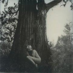 Tree of Life - Contemporary, Figurative, Women, Polaroid, Photograph, Nude