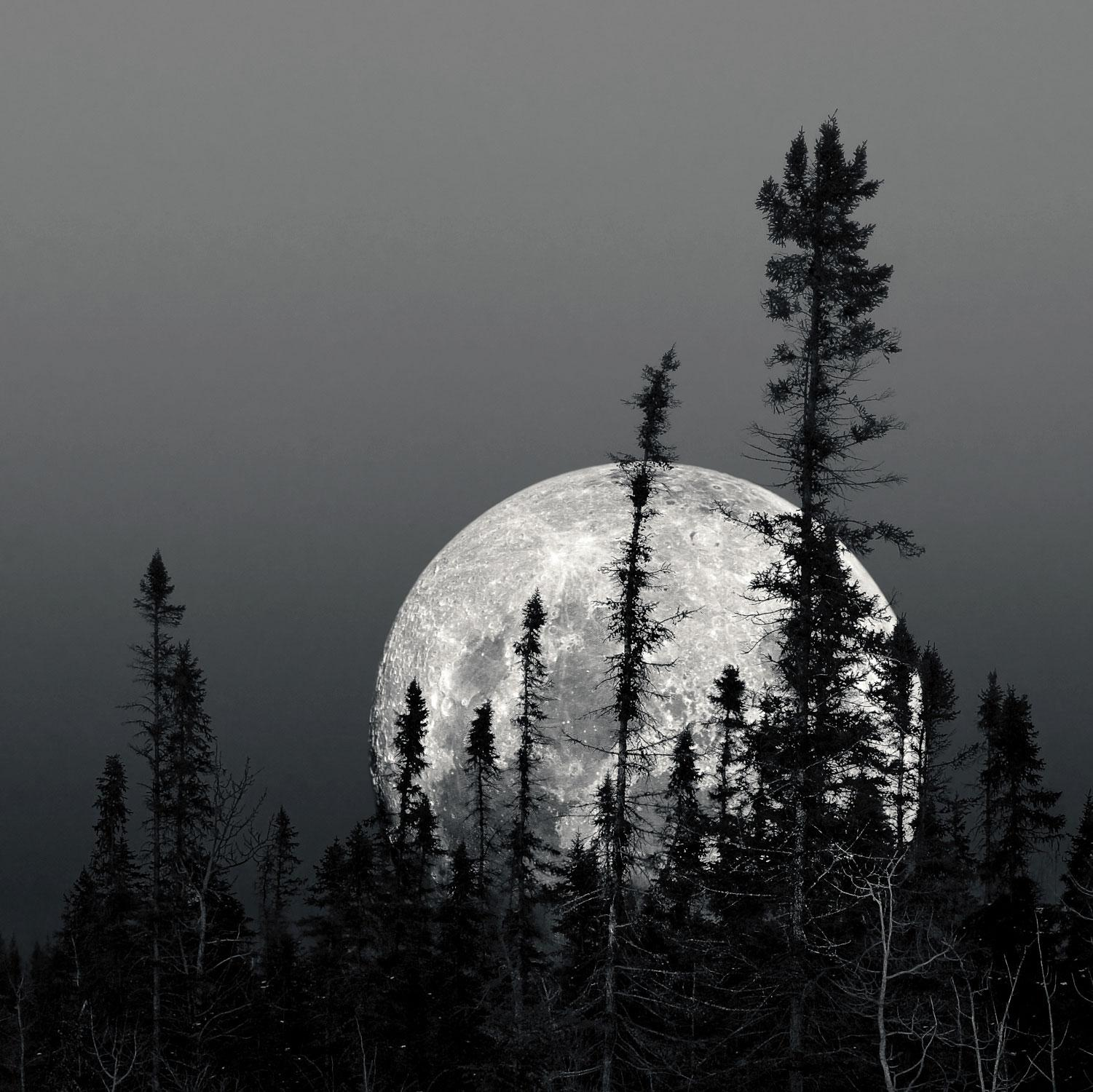 Boreal Moon, Photograph, Archival Ink Jet