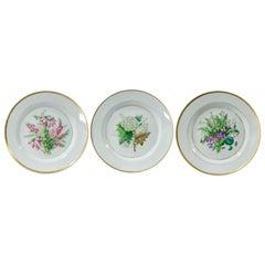 Königliche Porzellan Manufaktur, Three 1860s Botanic Plates
