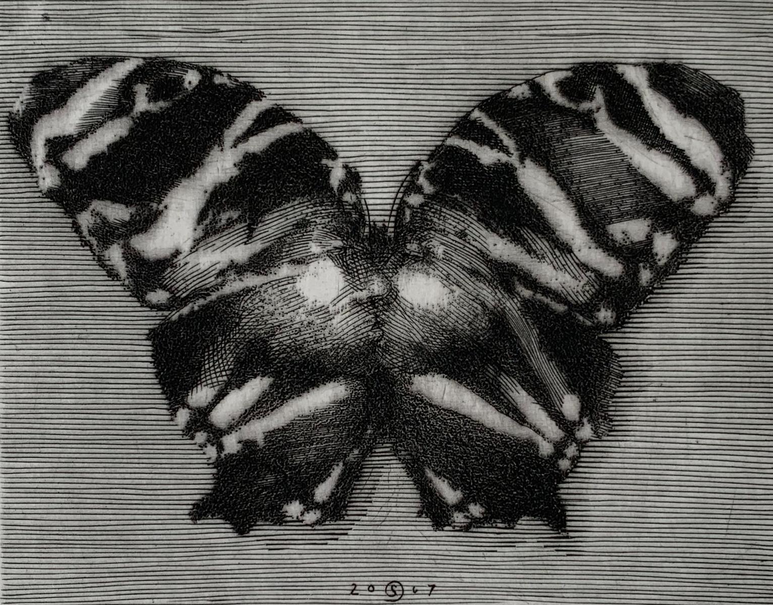 Butterfly - 21st Century Figurative Copperplate Print Black & White