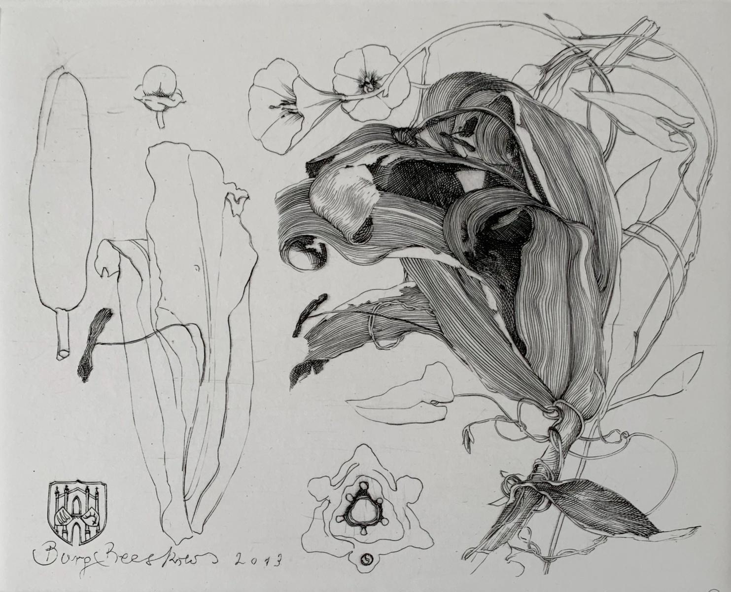 Lilies - 21st Century Figurative Copperplate Print Black & White, Flowers