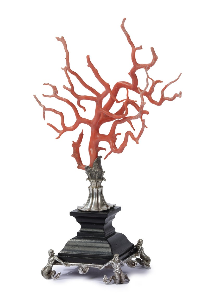 Italian Kunstkammer Red Coral Branch Ebony and Silver Stand, after Renaissance For Sale