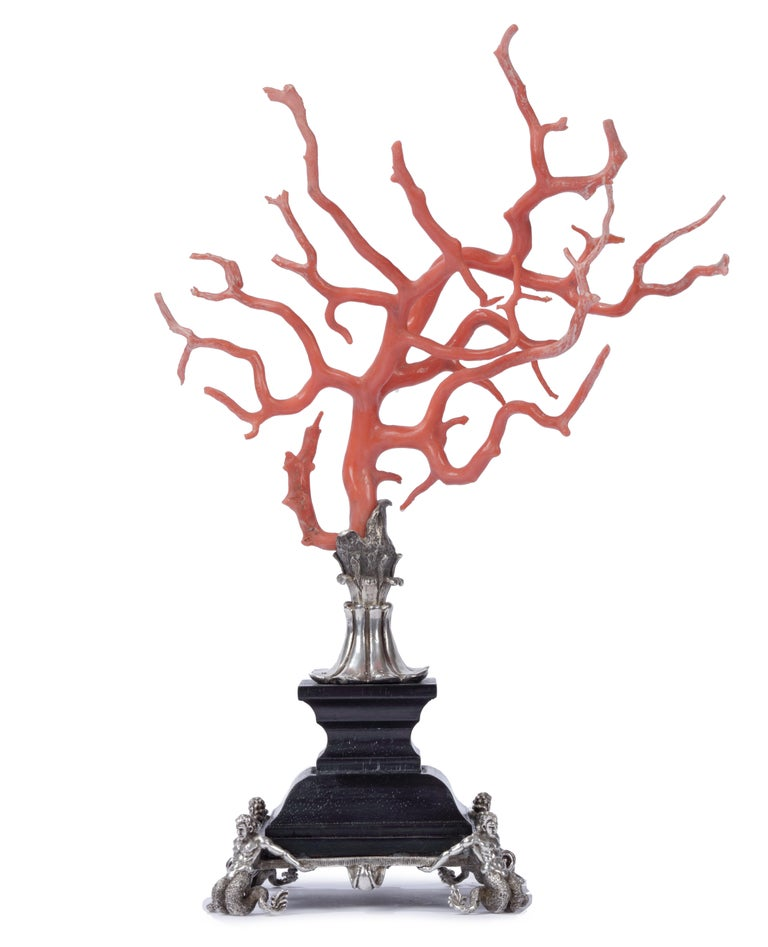 Kunstkammer Red Coral Branch Ebony and Silver Stand, after Renaissance In Excellent Condition For Sale In Amsterdam, NL
