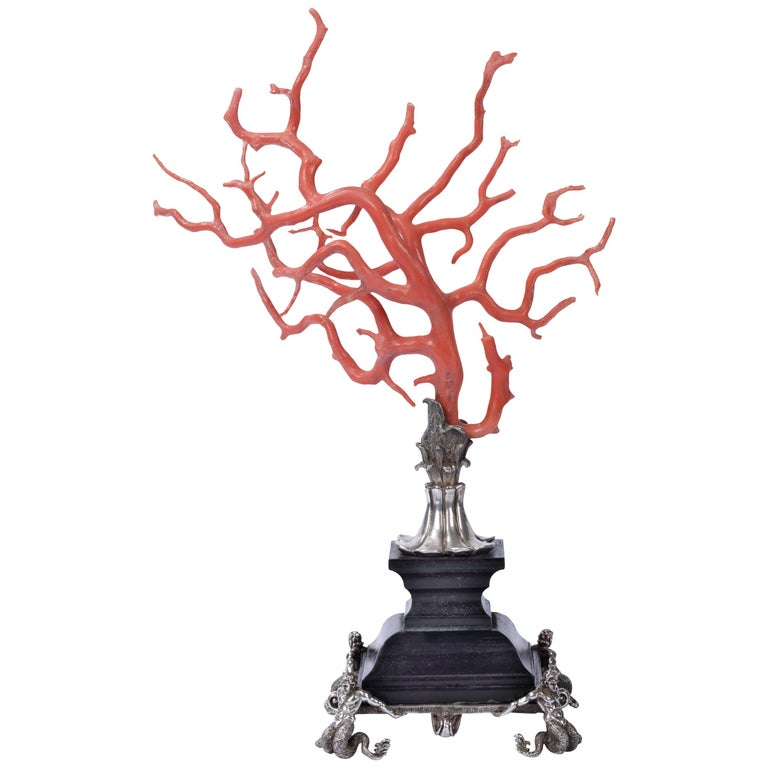 Kunstkammer Red Coral Branch Ebony and Silver Stand, after Renaissance For Sale