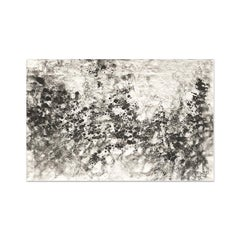 Ash Ceniza #10 (black and white, ashes, abstract expressionist, charcoal)