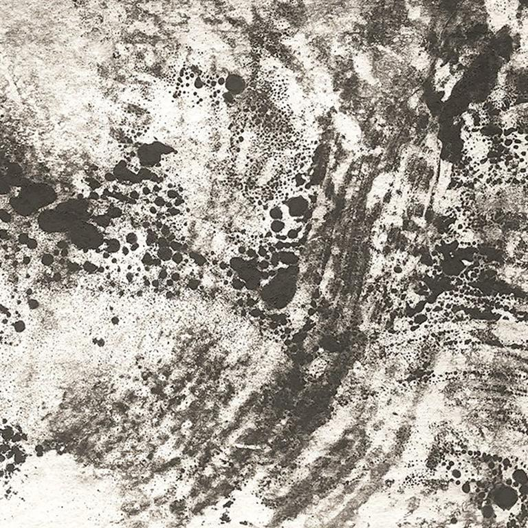 Ash Ceniza #12, (black and white, ashes, abstract expressionist, charcoal) - Gray Abstract Painting by Kurtis Brand