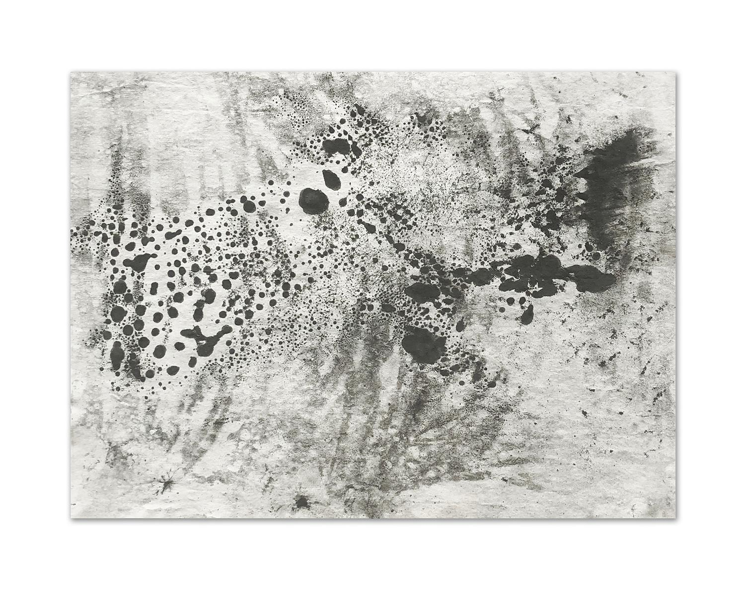 Ash Ceniza #4, (drawing, black and white, abstract, expressionist, ashes, paper)