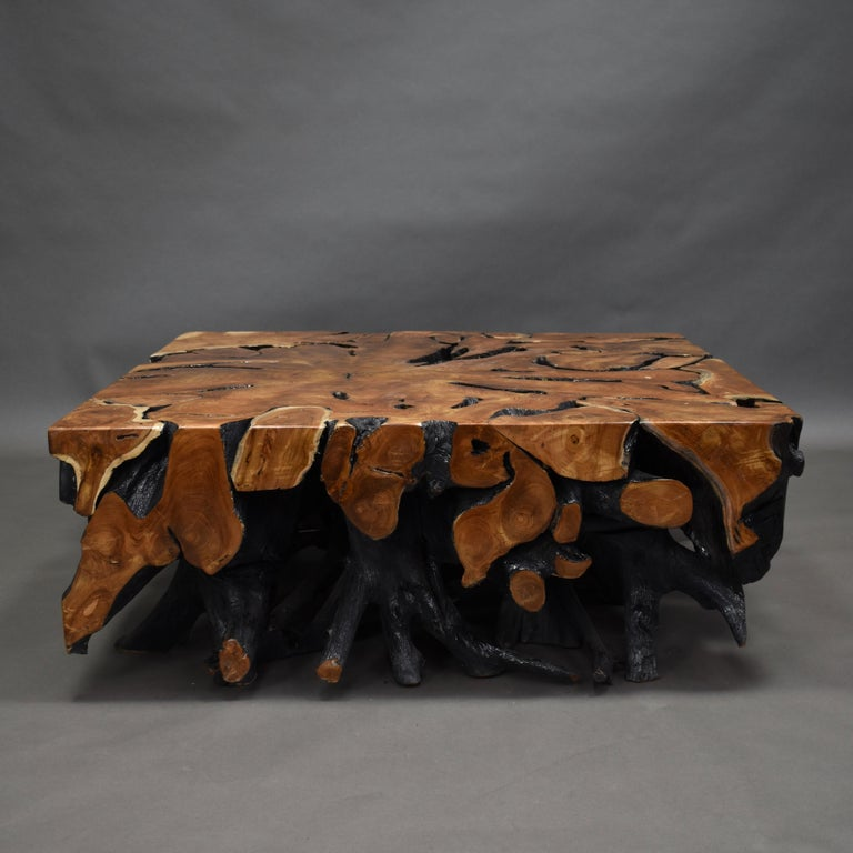 Lacquered Teak Root Square Coffee Table For Sale 5