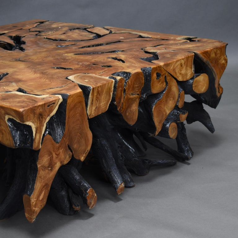 Lacquered Teak Root Square Coffee Table For Sale 8