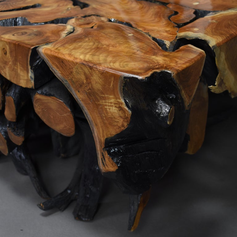 Lacquered Teak Root Square Coffee Table For Sale 11