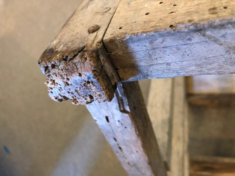 Ladder from France with Pegged Nails, Primitive Wood with Paint Remnants For Sale 8