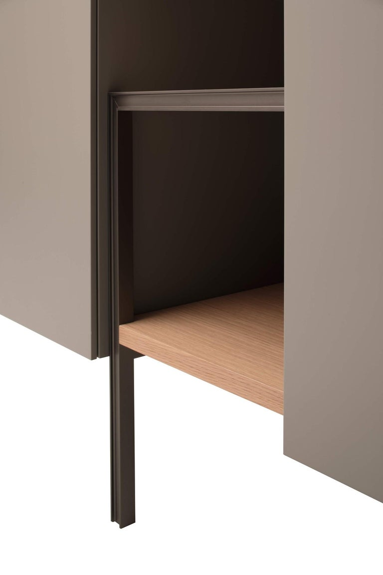 Modern Ladin Cupboard in Wood Veneer with Lacquer Finish by Busnelli For Sale