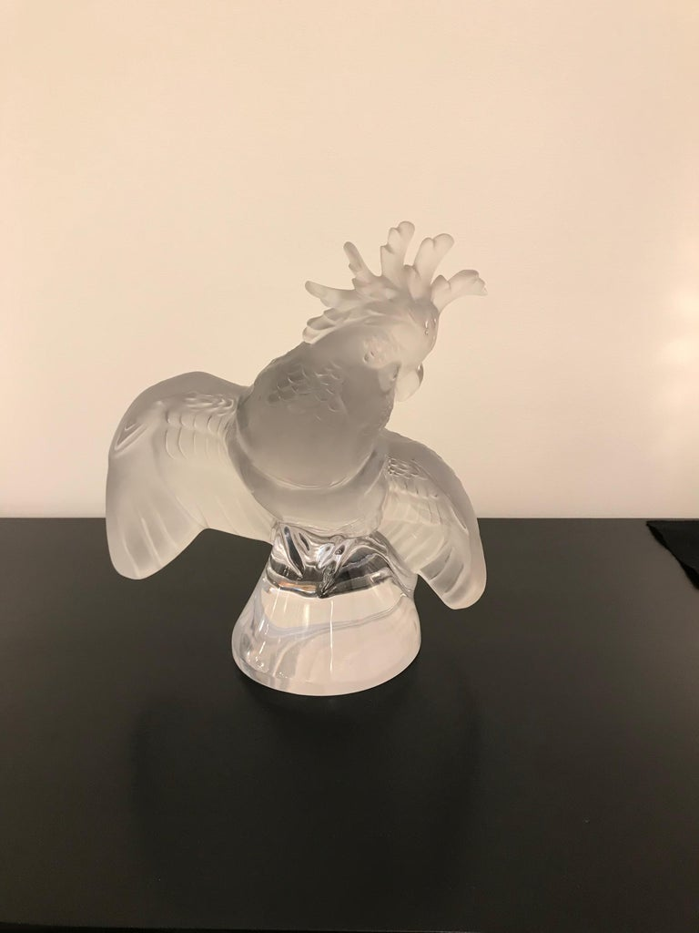 This is a large Lalique crystal cockatoo bird sculpture. Signed Lalique France on the base.