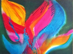 FIRE DANCER Signed Lithograph, Abstract Color Burst, Native American Culture