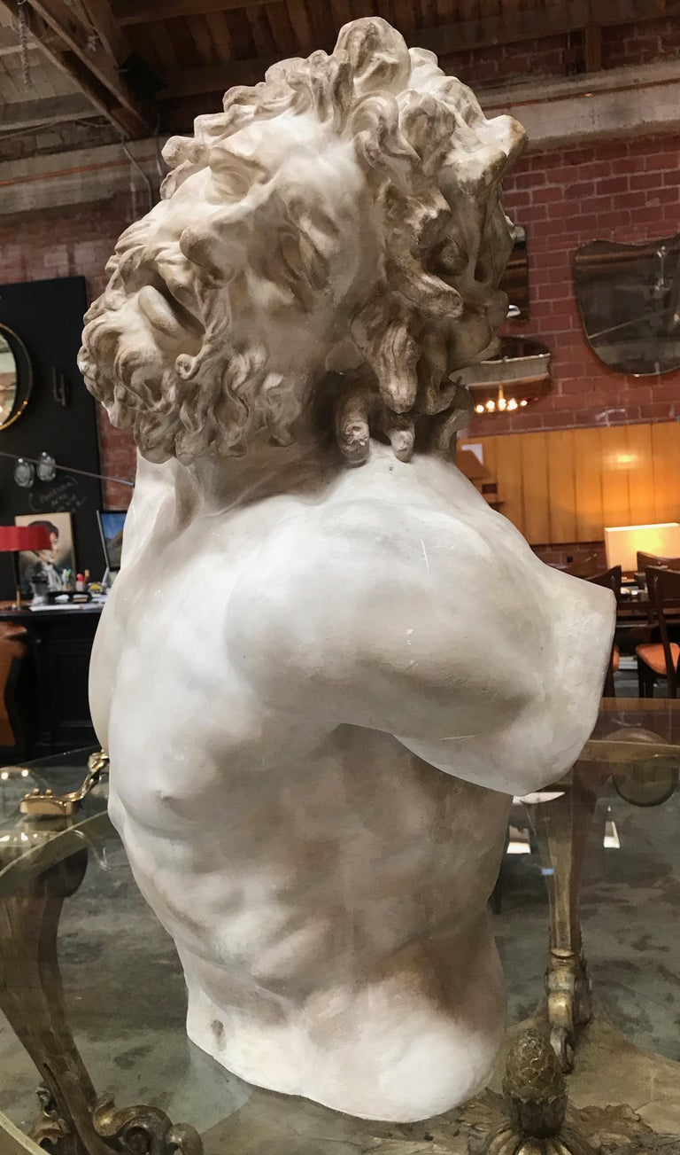 Modern Laocoon, Plaster Bust, Copy in Scale 1/1 For Sale