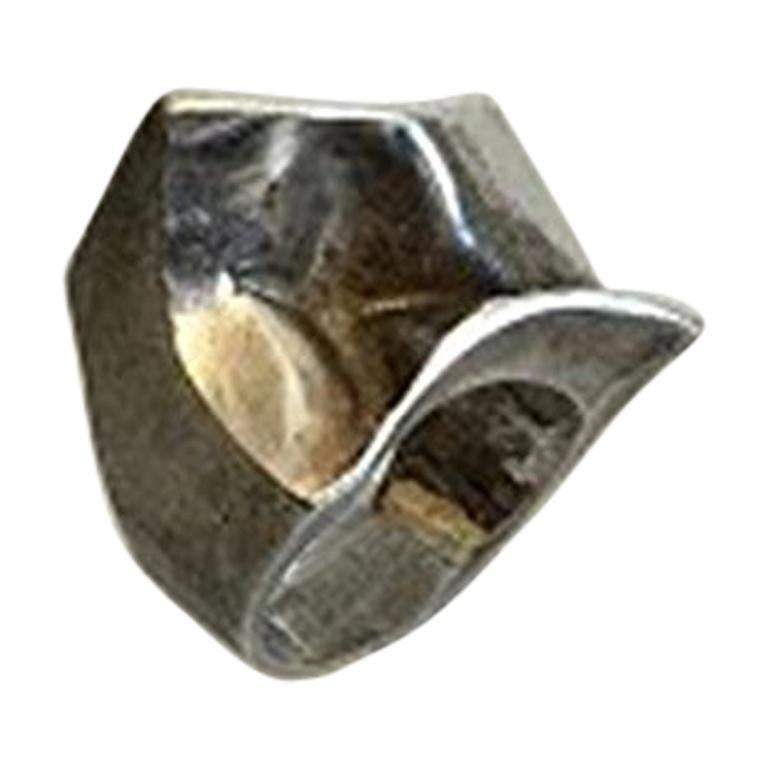 Lapponia, Finland, Ring Made of Silver