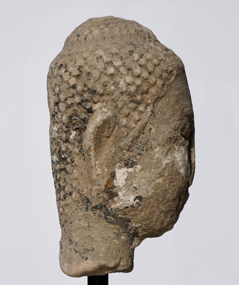 18th Century and Earlier Large 15th-16th Century Sandstone Thai Buddha Head For Sale