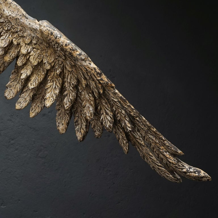 Large 17th Century hanging Italian Eagle or Bird of Prey Sculpture For Sale 1