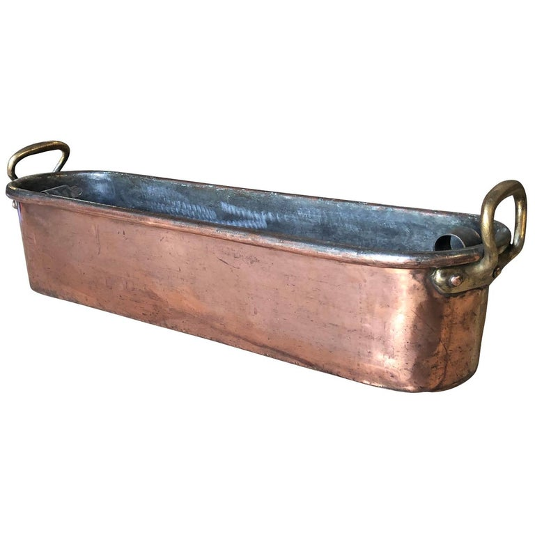 Large 18th Century French Copper Fish Pan For Sale