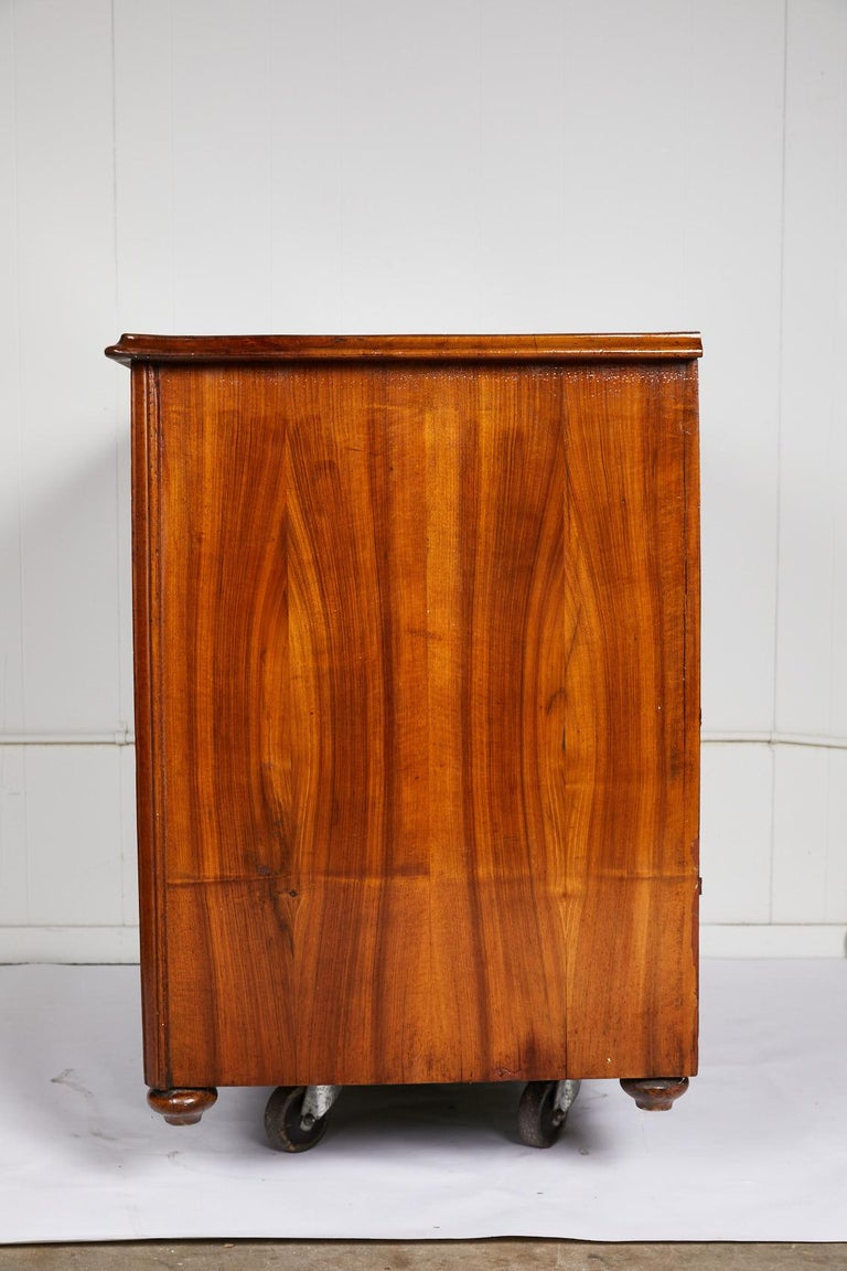 Rosewood Large 19th Century Biedermeier Commode For Sale