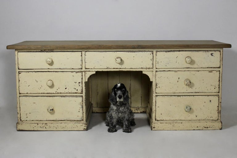 Victorian Large 19th Century Painted Pine Dog Kennel Dresser Base For Sale