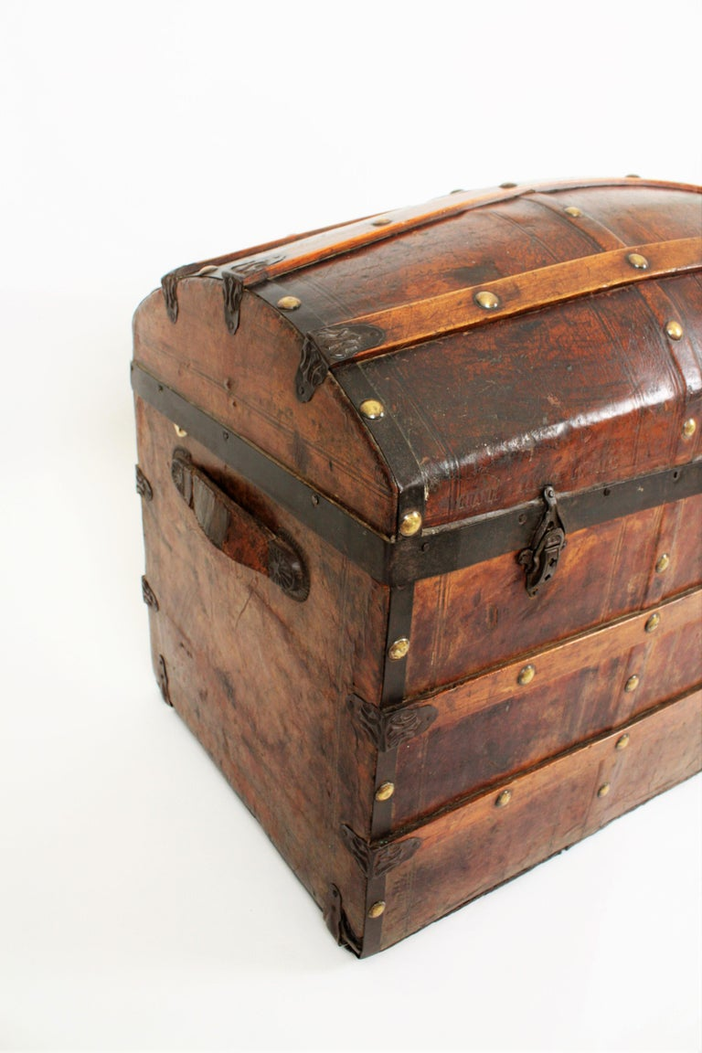 Portuguese Large Dome Top Leather Steamer Trunk, 19th Century For Sale 5