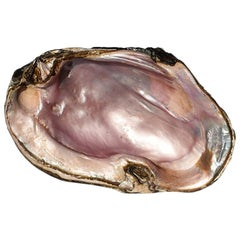 Large Abalone or Oyster Shell Catchall in Pearlescent Purple and Pink