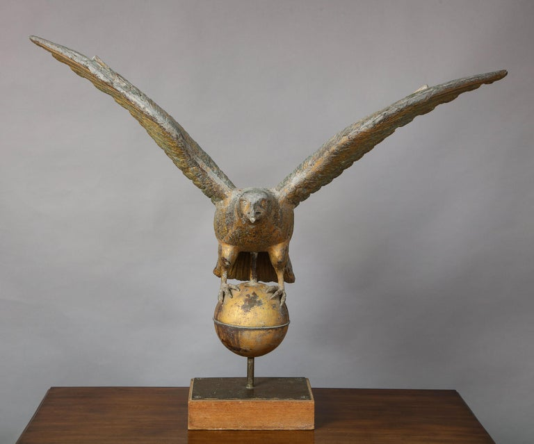 Very fine and large American full bodied eagle weathervane, the spread wings with original braced support and finely detailed feathers, the zinc and copper head with open beak, standing on a gilt ball, the whole retaining much original gilding, the