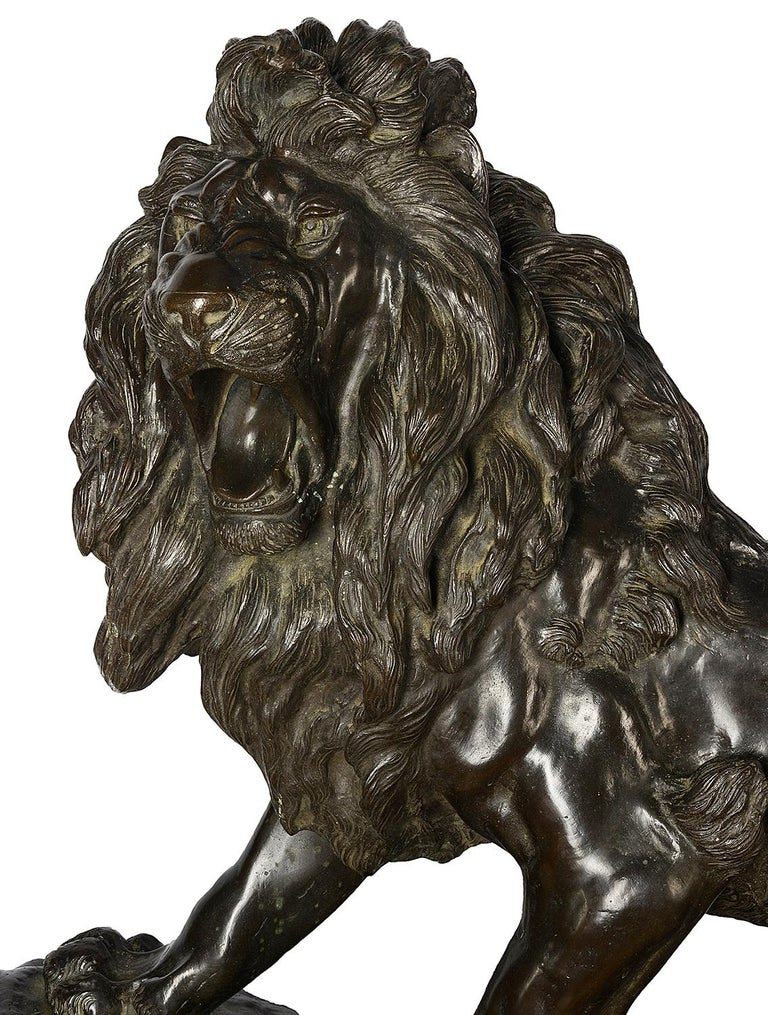 A very impressive Japanese Meiji period (1868-1912) bronze male Lion, standing on a rock and mounted on a blonde wooden stand.