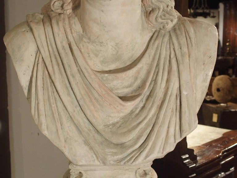 Large and Impressive 19th Century Plaster Bust of Niobe For Sale 5
