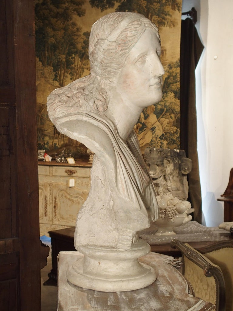 Italian Large and Impressive 19th Century Plaster Bust of Niobe For Sale