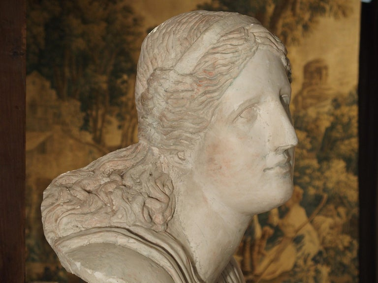 Large and Impressive 19th Century Plaster Bust of Niobe In Good Condition For Sale In Dallas, TX